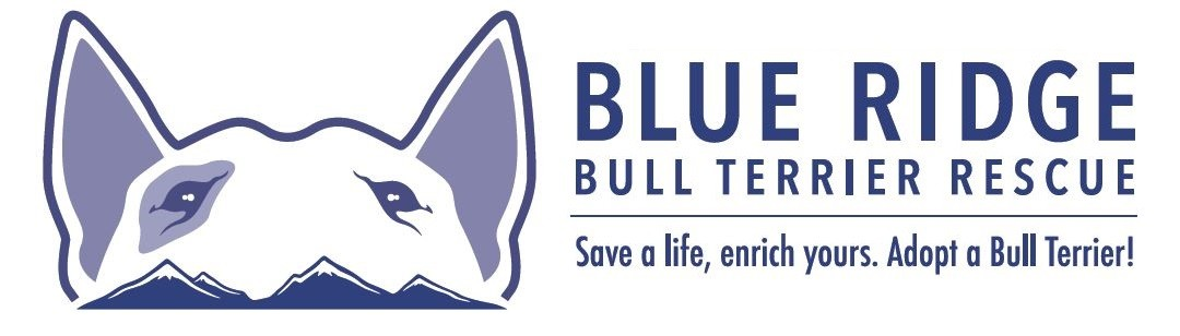 Blue Ridge Bull Terrier Shop