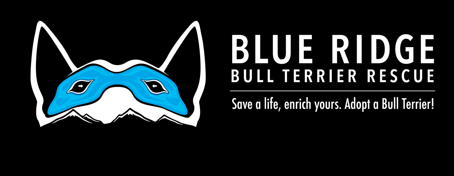 Blue Ridge Bull Terrier Rescue Page